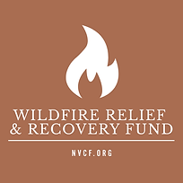 wildfire-color-block-logo.png