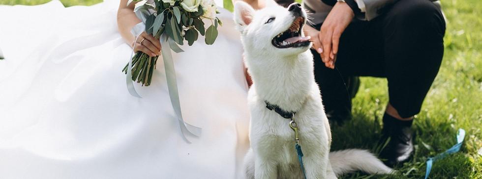 NUESTRA MISIÓN, es que los novios lleguen al día de su boda libres de estrés, con la tranquilidad y confianza de que ¡SU BODA SERÁ ÚNICA!