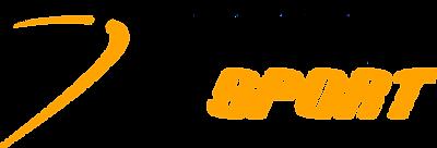 Logotipo-DynamoSports.png