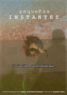 poster-PEQUENOS-INSTANTES.jpg