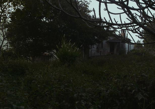 El Paraiso-Dulce Ferreira 2.jpg