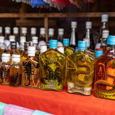 Multiple bottles of preservatives and various animals sit on the porch of a local Cambodian house serving as souvenirs for tourists passing through.