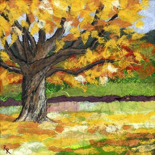 """Fall Colors 12""""x12"""""""