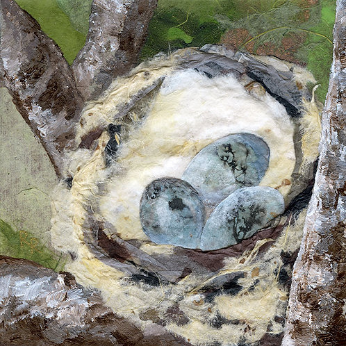 """Yellow Warbler Nest"""