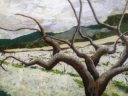 """Winter in Wine Country 16""""x20"""""""