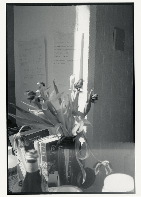nicholas (20).jpg
