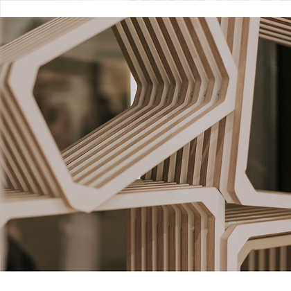 Parallel shelving Steckregal Designerstück