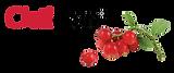 Logo Cisticran.png