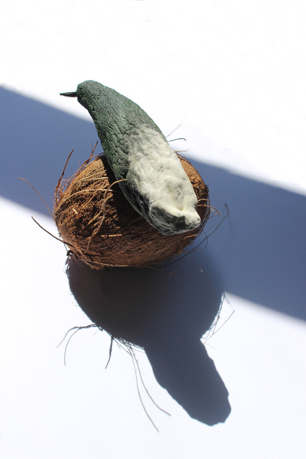 2. Bird's Nest, Zucchini and Coconut, 15 x 10 cm, 2020