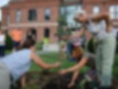 UVAC_municipal-planting_Hartford_photo.E