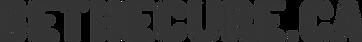 BeTheCure.ca-Logo.png