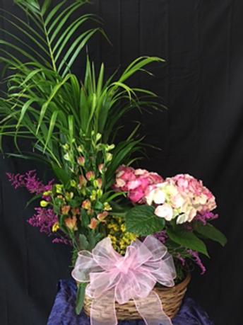 Double Plant Basket w/ Fresh Flowers #815