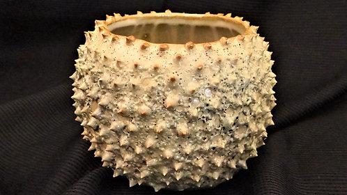 "Prickly Cactus Vase 4"" Tall"