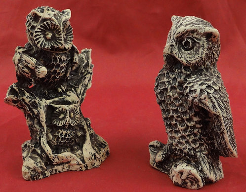 Two Owls in a Tree/ Solo Owl