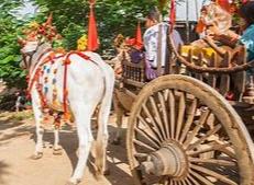 ox cart 3.png