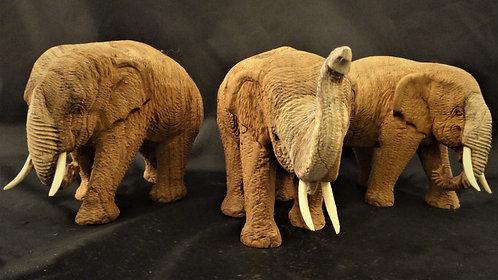 Teak Elephants