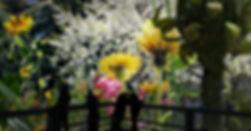 Carolas Garten