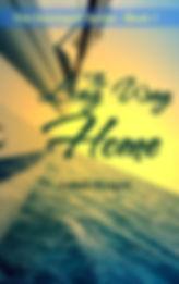 The_Long_Way_Home.jpg