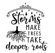 Storrms Make Roots.jpg