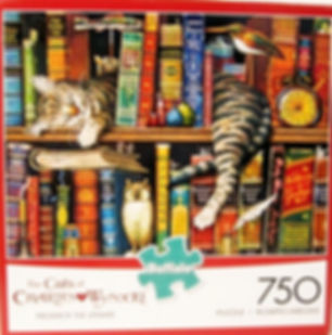 CAT%20BKSHELF%20BOX_edited.jpg