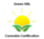 vector_green_sun_logo (2).png