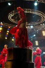 amadeus-agentura-cirkus-svet-muzikal.JPG