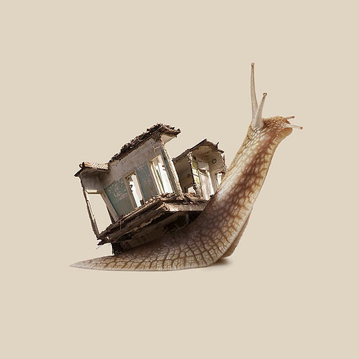 9-snail-photo-manipulation-by-jm-navarro