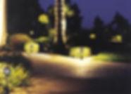 Landscaping Lighting.jpg