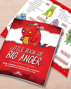 Little Book of Big Anger