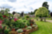 home farm web site photos (1).jpg
