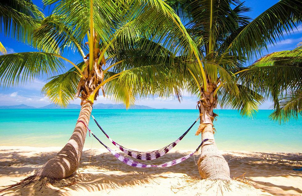 tropical_sea_paradise_summer_sunshine_pa