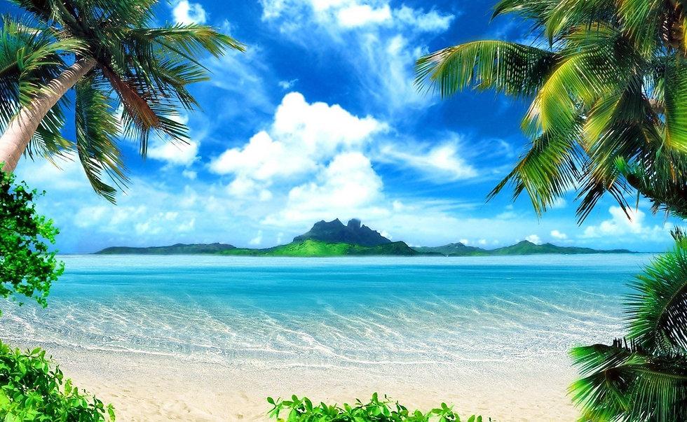 palm_trees_tropical_beach_sea_island_1920x1181.jpg