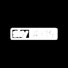 SKY-ARTS.png