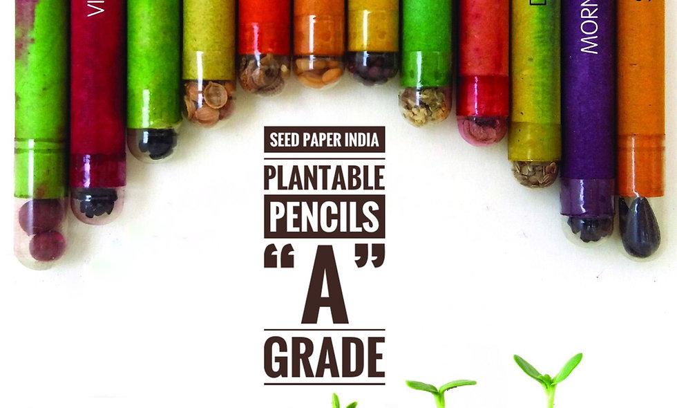 Plantable Seed Pencils