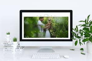 בניה ועיצוב אתר