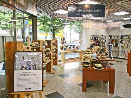 約70種類の「田中帽子店の麦わら帽子」を期間限定で展示販売中! 1F