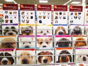 「THE DOG」カレンダー