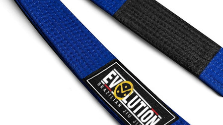 Evolution | blue belt curriculum