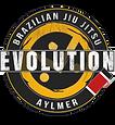Evolution Brazilian Jiu jitsu aylmer gat