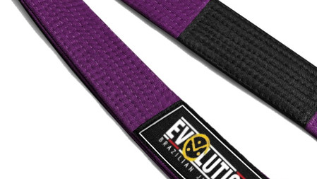 Evolution | purple belt curriculum