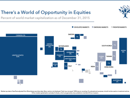 Investing in a Globally Diversified Portfolio