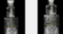 Akins Gina - AP Full Spine.PNG