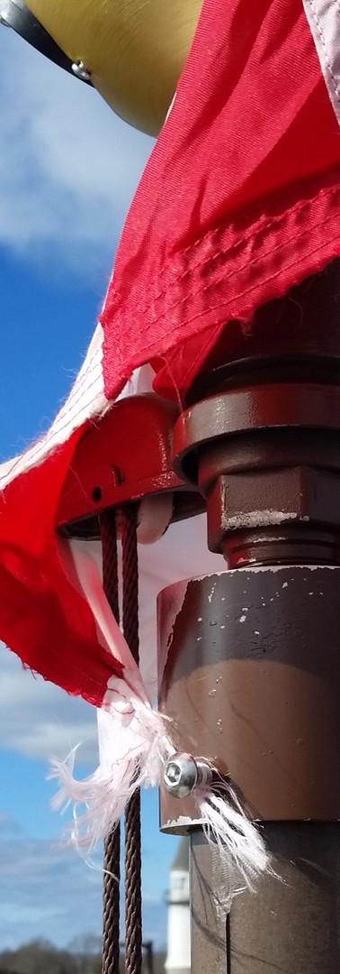 tangled flag.jpg
