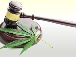 Medical Marijuana Privacy Laws
