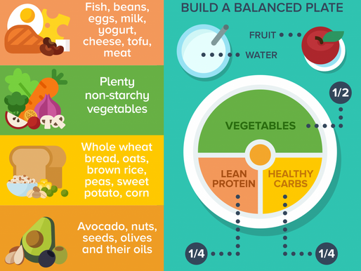 The Importance of a Well Balanced Diet