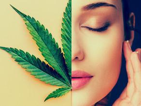 Tips to Avoiding a Negative Marijuana Experience
