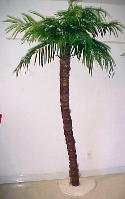 8ft Coconut Palm Tree