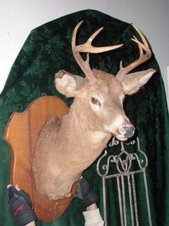 mounted_deer_head_small.jpg