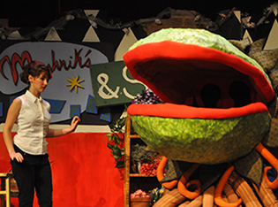 Chestatee Little Shop May 11 puppet 4 audrey gal