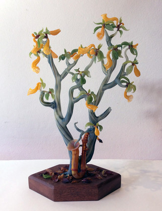 The Saxaphone Tree